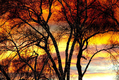 Changing Skies Art Print by James BO  Insogna