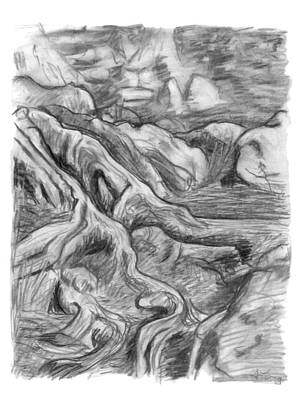 Soil Drawing - Charcoal Drawing Of Gnarled Pine Tree Roots In Swampy Area by Adam Long