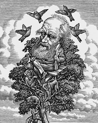 Charles Darwin In His Evolutionary Tree Art Print by Bill Sanderson