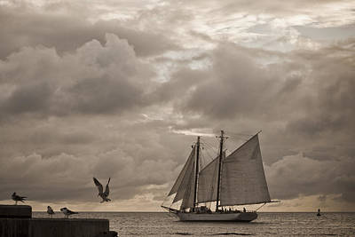 Photograph - Chasing The Wind by Scott Meyer