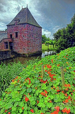 Art Print featuring the photograph Chateau Tower And Nasturtiums by Dave Mills