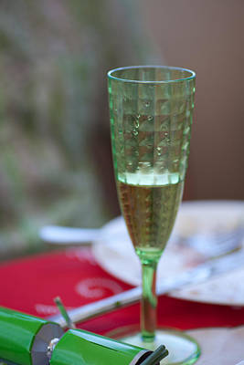 Photograph - Cheers by Carole Hinding