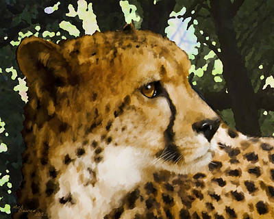 Photograph - Cheetah by Mickey Clausen