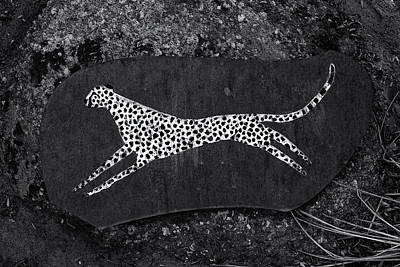 Photograph - Cheetah Plaque Monochrome by Tim Nichols
