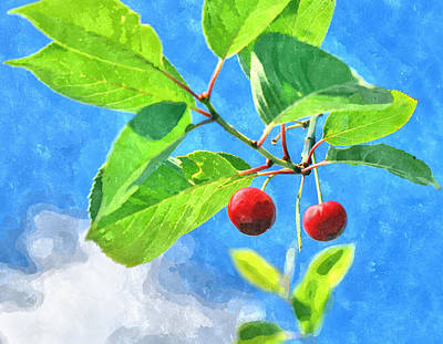 Cherry Berries Art Print by Aleksandr Volkov
