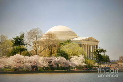 Cherry Blossom Photograph - Cherry Blossoms And Jefferson Memorial Two by Susan Isakson