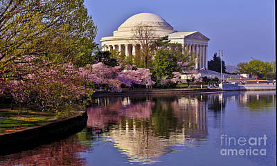 Photograph - Cherry Blossoms And The Jefferson Memorial by Mark East