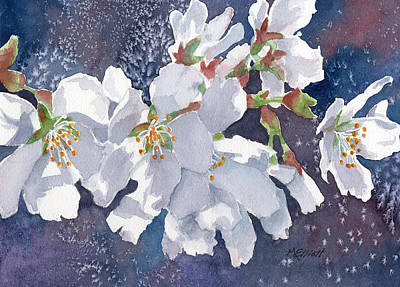Cherry Tree Painting - Cherry Blossoms by Marsha Elliott