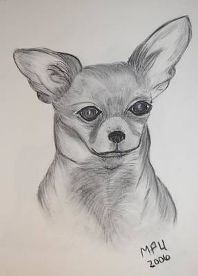 Art Print featuring the drawing Chi Chi by Maria Urso