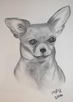 Chi Drawing - Chi Chi by Maria Urso