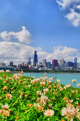 Photograph - Chicago Clover by Emily Stauring