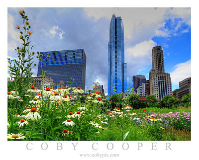 Photograph - Chicago Flowers by Coby Cooper