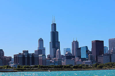 Art Print featuring the photograph Chicago Skyline by Peter Ciro