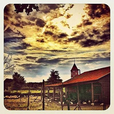 Dutch Photograph - Chicken Farm In Yesterday's #sunset by Wilbert Claessens