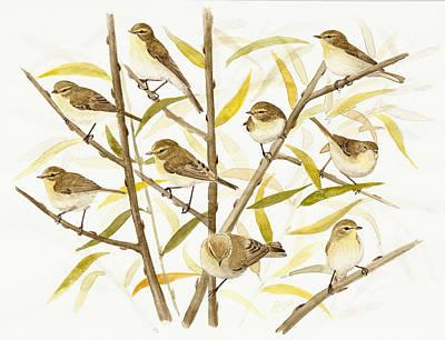 Chiffchaff's Migration Art Print by Deak Attila