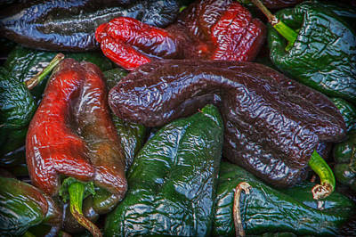 Photograph - Chile Ancho by James Woody