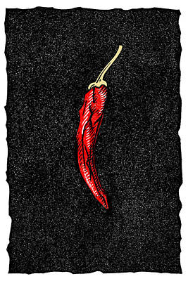 Linocut Photograph - Chilli Pepper, Woodcut by Gary Hincks