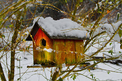 Chilly Birdhouse Art Print by Debra and Dave Vanderlaan