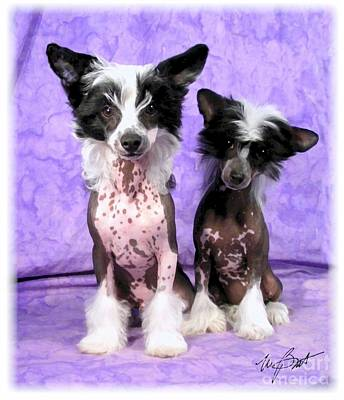 Pup Digital Art - Chinese Crested Pups by Maxine Bochnia