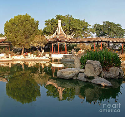 Photograph - Chinese Garden In Malta by Mary Attard