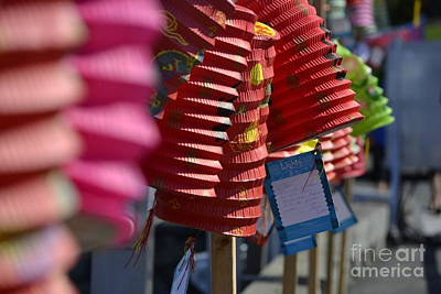 Photograph - Chinese Lanterns by Traci Cottingham