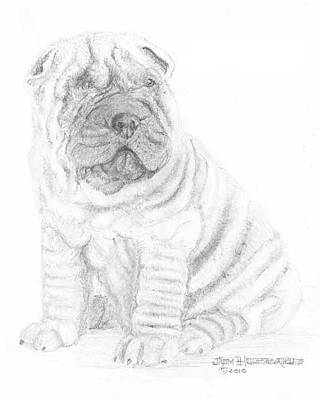 Art Print featuring the drawing Chinese Shar-pei by Jim Hubbard