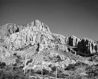 Photograph - Chisos Mountain Detail by David Chalker