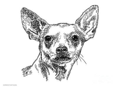 Drawing - Chiwawa-portrait-drawing by Gordon Punt