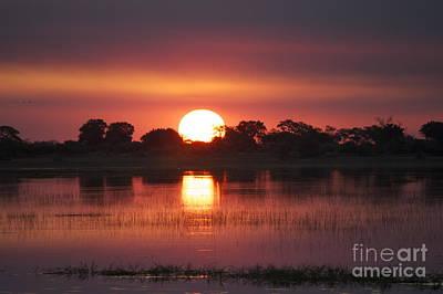 Wall Art - Photograph - Chobe River Sunset by Judith Hochroth