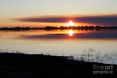 Wall Art - Photograph - Chobe Sunset by Judith Hochroth