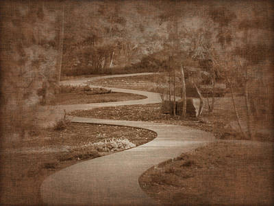 Photograph - Christian Walk by Cindy Wright