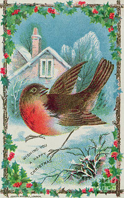 Painting - Christmas Card Depicting A Robin  by English School