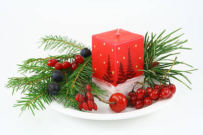 Art Print featuring the photograph Christmas Composition With Wood Berries by Aleksandr Volkov