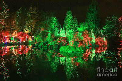 Photograph - Christmas Fantasyland by Frank Townsley