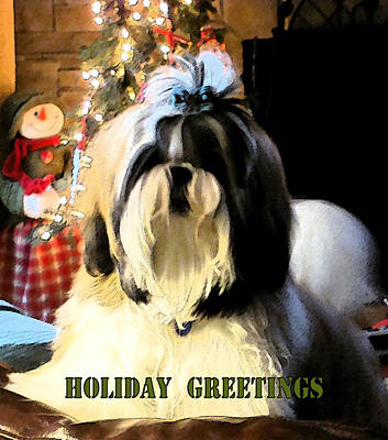 Digital Art - Christmas Greetings From Bijou by Glenna McRae