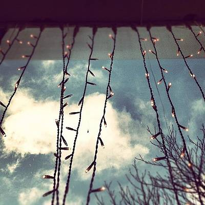 Fairy Photograph - Christmas Lights During The Day #xmas by Neil Gray