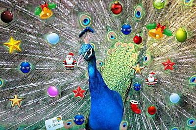 Rustenburg Digital Art - Christmas Peacock by Ronel Broderick