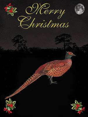 Pheasant Mixed Media - Christmas Pheasant by Eric Kempson