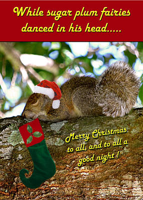 Christmas Squirrels Wall Art - Photograph - Christmas Wish by Adele Moscaritolo