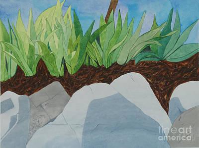 Chromitic Iris Art Print by Jennifer Taylor Rogerson