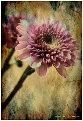 Chrysanthemum Art Print by Michelle Frizzell-Thompson