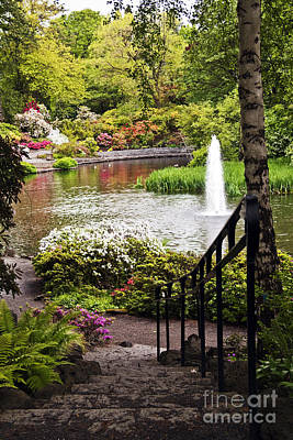Photograph - Chrystal Spring Rhododendron Garden  by Sherry  Curry