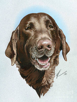 Chocolate Lab Drawing - Chubbs by Marshall Robinson
