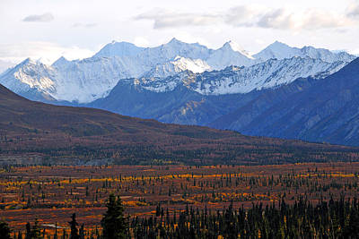 Photograph - Chugach Mountains by Alan Lenk