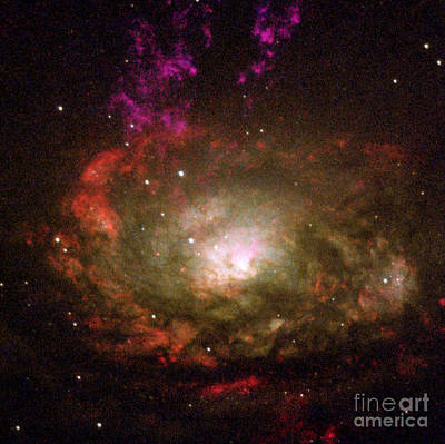 Photograph - Circinus Galaxy by Nasa