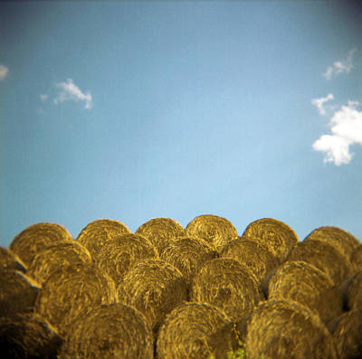 Repetition Photograph - Circular Hay Bales by James Arnold