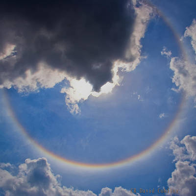 Photograph - Circular Rainbow - Square Cropped by David Coblitz