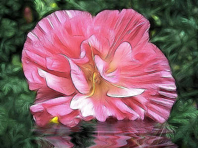 Photograph - Cistus Reflections by Fiona Messenger
