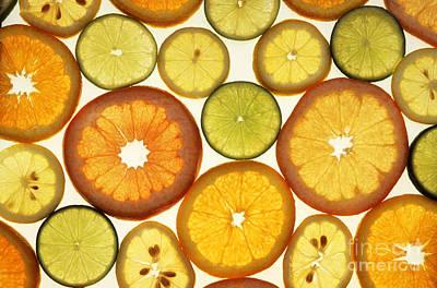 Grapefruit Photograph - Citrus Slices by Photo Researchers