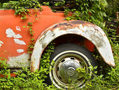 Photograph - Classic Car Forgotten by Carolyn Marshall